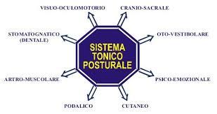 Sistema-Tonico-Posturale