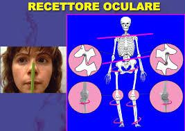 Recettore-Oculare
